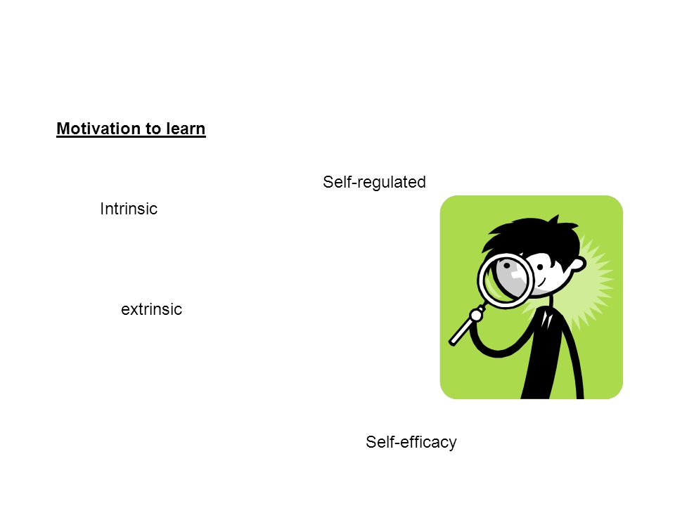 Motivation to learn Intrinsic extrinsic Self-regulated Self-efficacy
