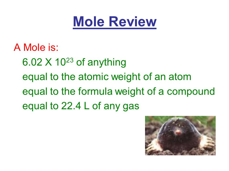 Mole Review A Mole is: 6.02 X of anything equal to the atomic weight of an atom equal to the formula weight of a compound equal to 22.4 L of any gas