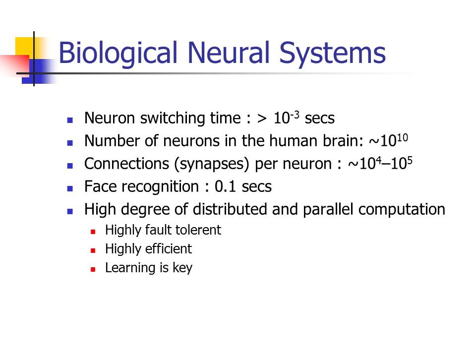 Biological Neural Systems Neuron switching time : > secs Number of neurons in the human brain: ~10 10 Connections (synapses) per neuron : ~10 4 –10 5 Face recognition : 0.1 secs High degree of distributed and parallel computation Highly fault tolerent Highly efficient Learning is key