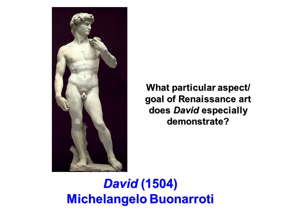 David (1504) Michelangelo Buonarroti What particular aspect/ goal of Renaissance art does David especially demonstrate