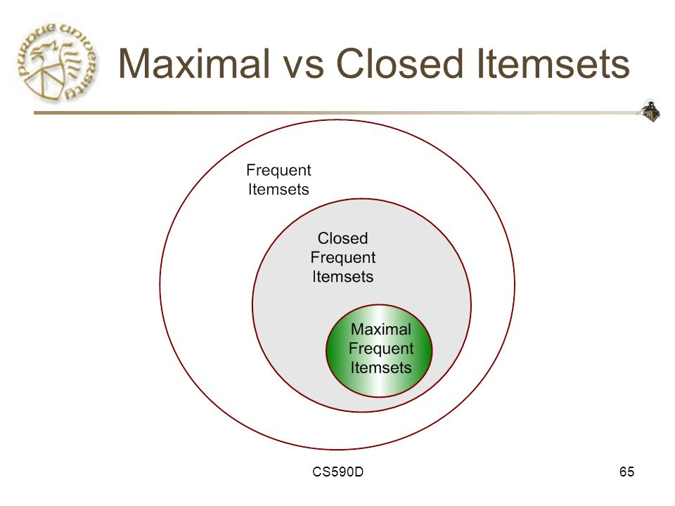 CS590D65 Maximal vs Closed Itemsets
