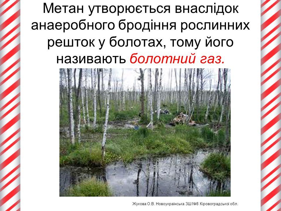 Метан утворюється внаслідок анаеробного бродіння рослинних решток у болотах, тому його називають болотний газ. Жукова О.В. Новоукраїнська ЗШ №8 Кірово