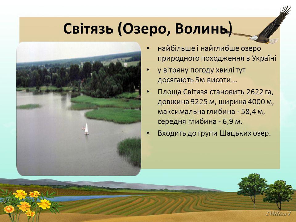 Світязь (Озеро, Волинь ) найбільше і найглибше озеро природного походження в Україні у вітряну погоду хвилі тут досягають 5м висоти...