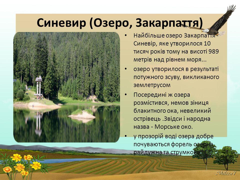 Синевир (Озеро, Закарпаття) Найбільше озеро Закарпаття - Синевір, яке утворилося 10 тисяч років тому на висоті 989 метрів над рівнем моря...