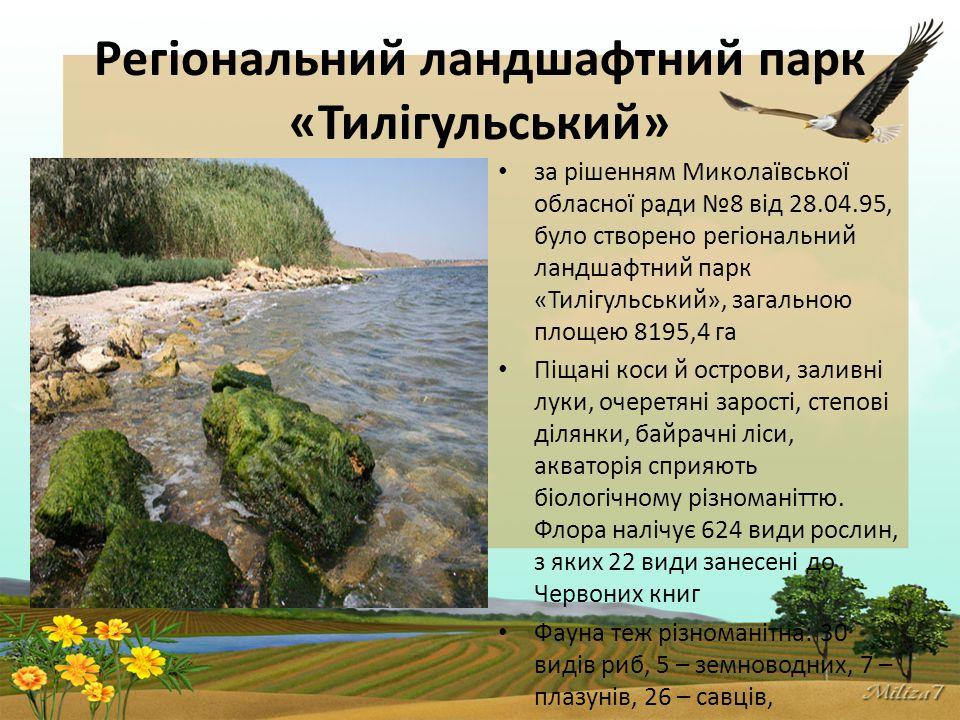 Регіональний ландшафтний парк «Тилігульський» за рішенням Миколаївської обласної ради №8 від 28.04.95, було створено регіональний ландшафтний парк «Тилігульський», загальною площею 8195,4 га Піщані коси й острови, заливні луки, очеретяні зарості, степові ділянки, байрачні ліси, акваторія сприяють біологічному різноманіттю.