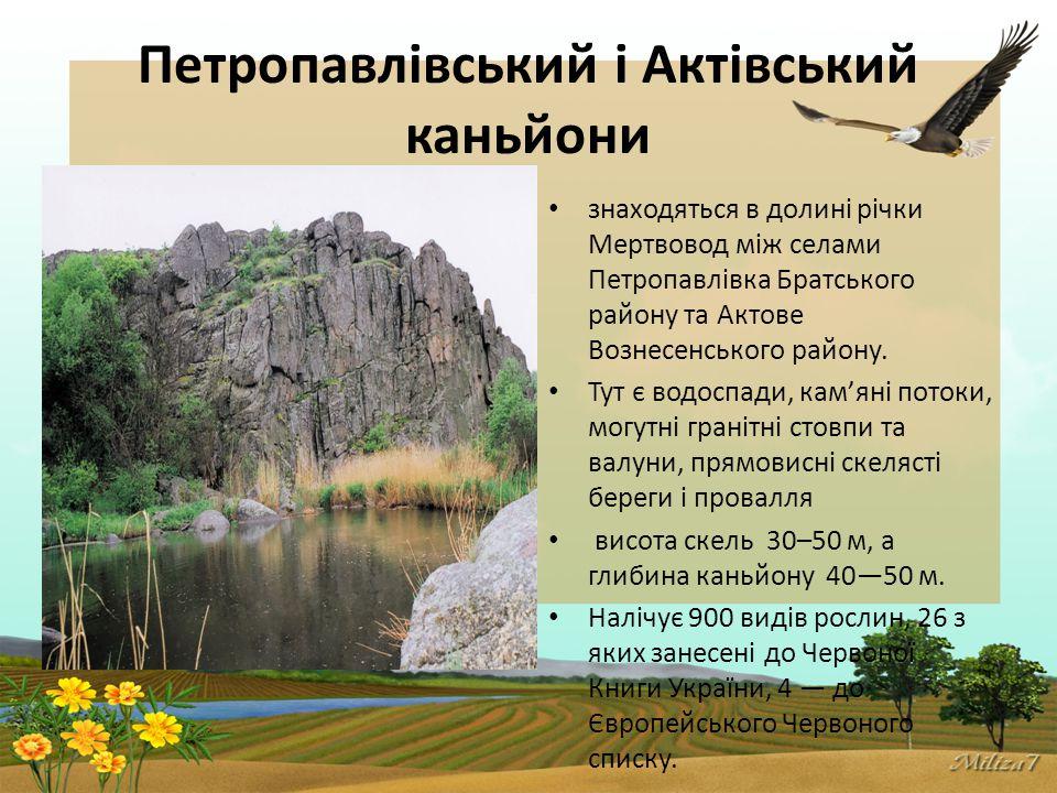 Петропавлівський і Актівський каньйони знаходяться в долині річки Мертвовод між селами Петропавлівка Братського району та Актове Вознесенського району.