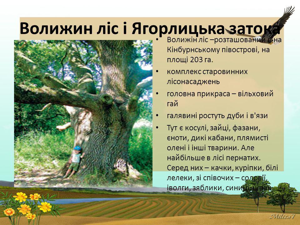 Волижин ліс і Ягорлицька затока Волижін ліс –розташований в на Кінбурнському півострові, на площі 203 га.