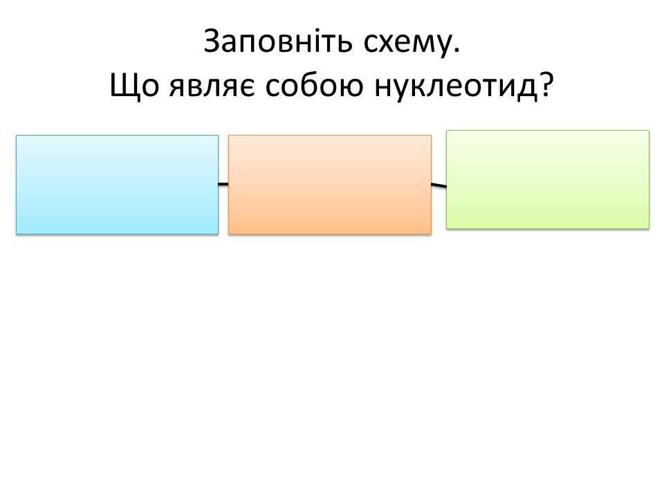 Заповніть схему. Що являє собою нуклеотид?