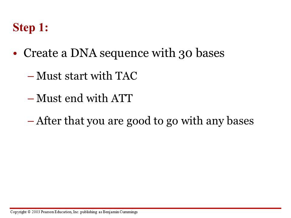 Dna base pairing worksheet key