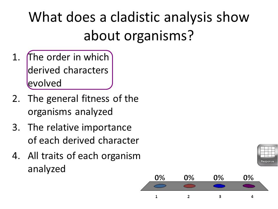 What does a cladistic analysis show about organisms.