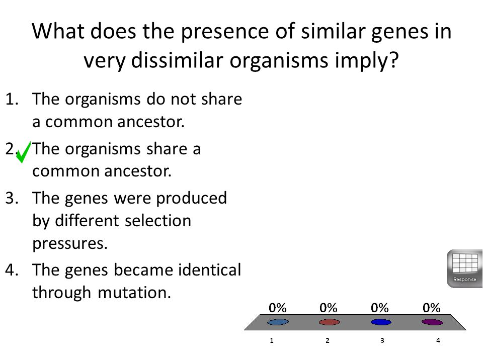 What does the presence of similar genes in very dissimilar organisms imply.