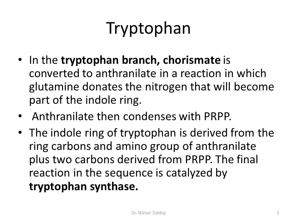 Tryptophan In the tryptophan branch, chorismate is converted to anthranilate in a reaction in which glutamine donates the nitrogen that will become part of the indole ring.