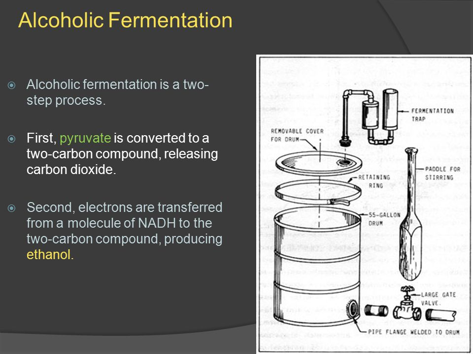 Alcoholic Fermentation  Alcoholic fermentation is a two- step process.