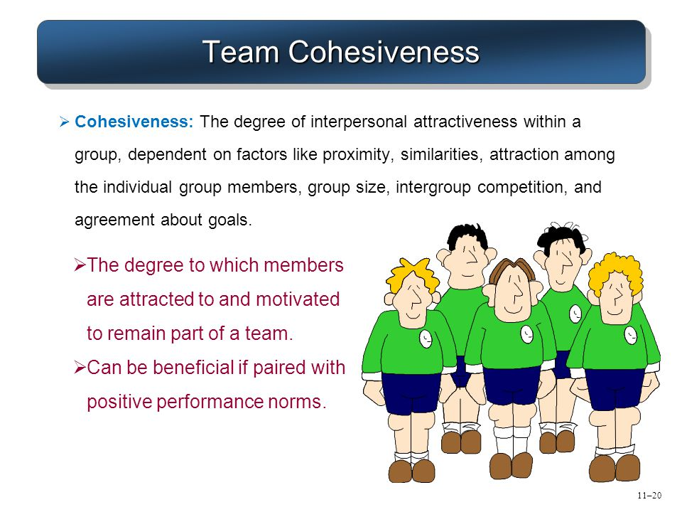 11–20 Team Cohesiveness  The degree to which members are attracted to and motivated to remain part of a team.  Can be beneficial if paired with posi