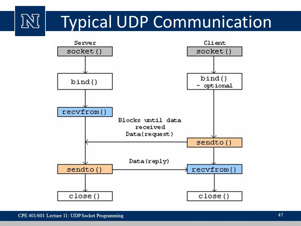 Typical UDP Communication 47 CPE 401/601 Lecture 11: UDP Socket Programming