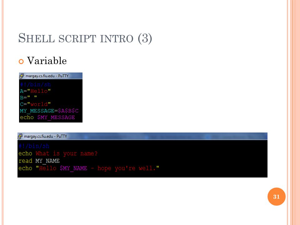 S HELL SCRIPT INTRO (3) Variable 31