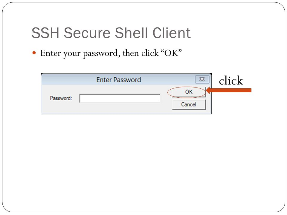 SSH Secure Shell Client Enter your password, then click OK click