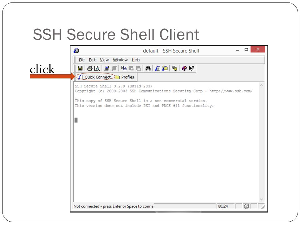 SSH Secure Shell Client click