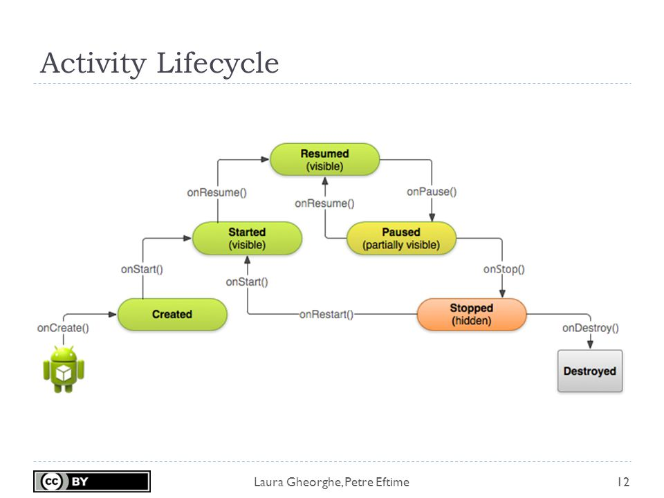 Laura Gheorghe, Petre Eftime Activity Lifecycle 12