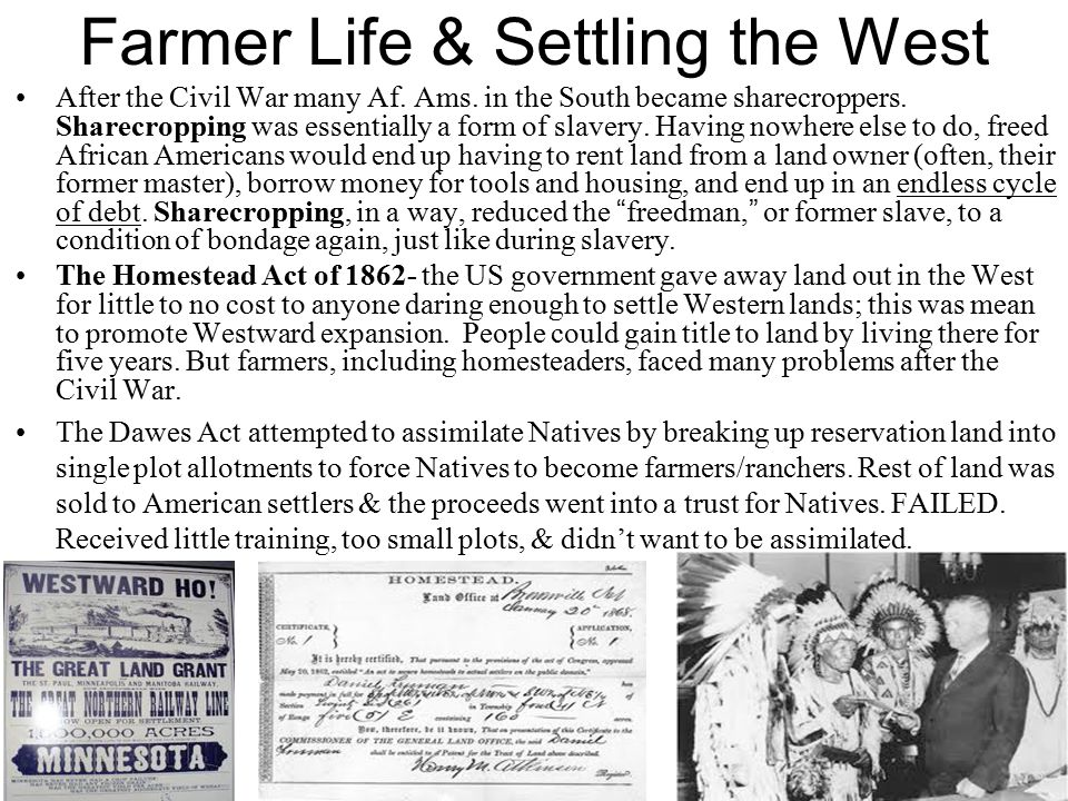 similarities the dawes act and the homestead act The main way in which the homestead act and the dawes act are similar is that both had to do with the american division of land, although the former had to do with american settlement, while the latter had to do with indian settlement.