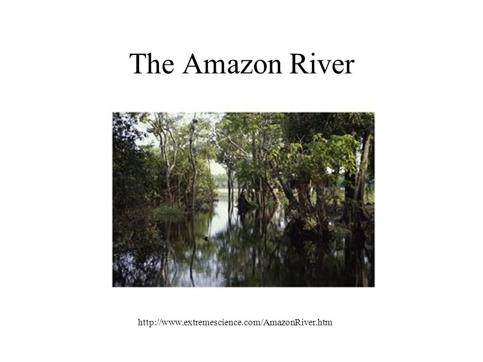 The Amazon River http://www.extremescience.com/AmazonRiver.htm