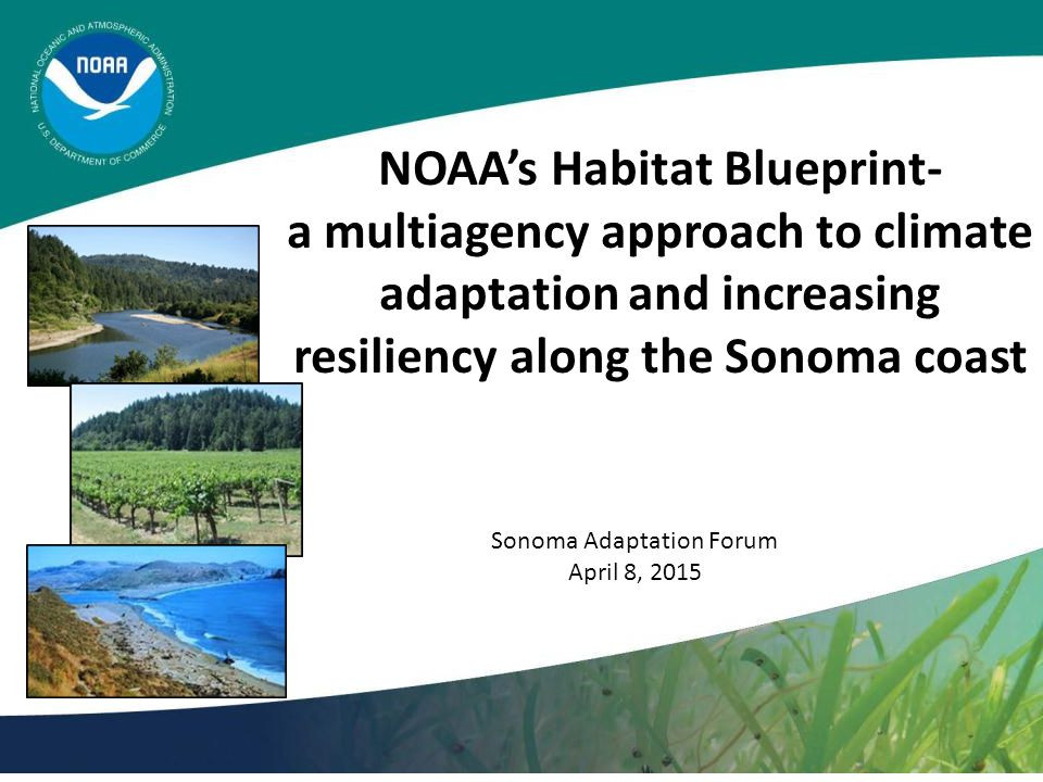 NOAA's Habitat Blueprint- a multiagency approach to climate adaptation and increasing resiliency along the Sonoma coast Sonoma Adaptation Forum April 8, 2015