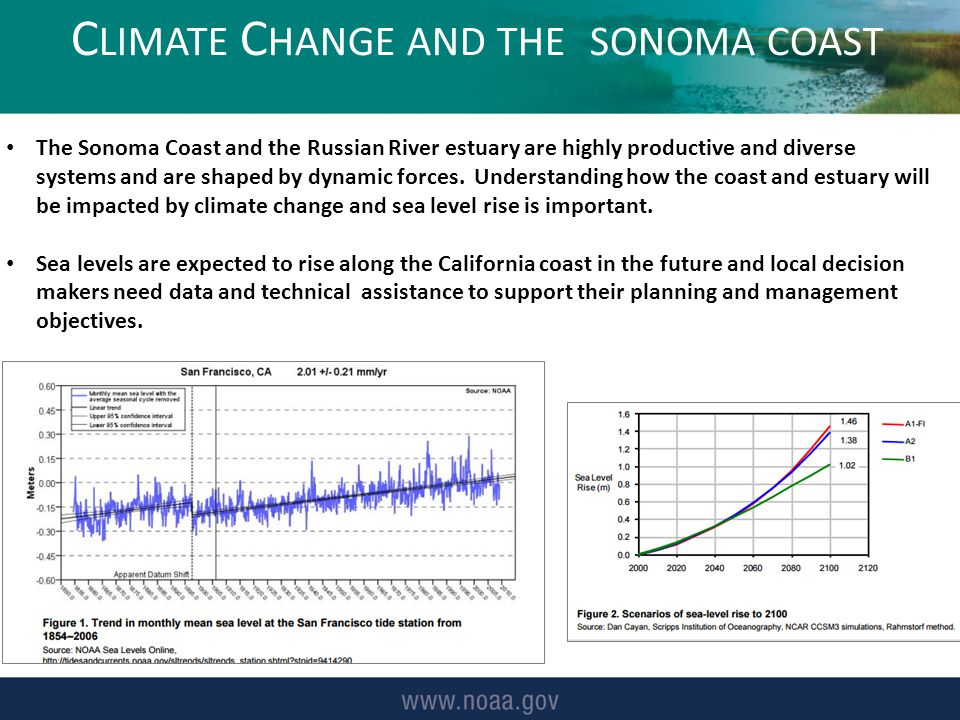C LIMATE C HANGE AND THE SONOMA COAST The Sonoma Coast and the Russian River estuary are highly productive and diverse systems and are shaped by dynamic forces.