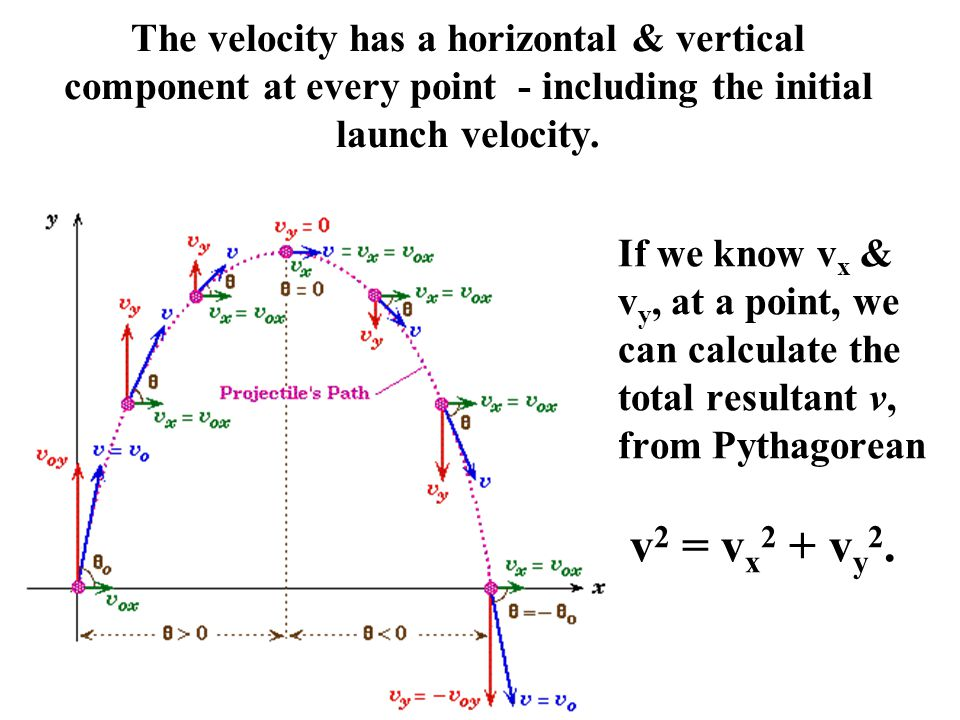 The velocity has a horizontal & vertical component at every point - including the initial launch velocity.