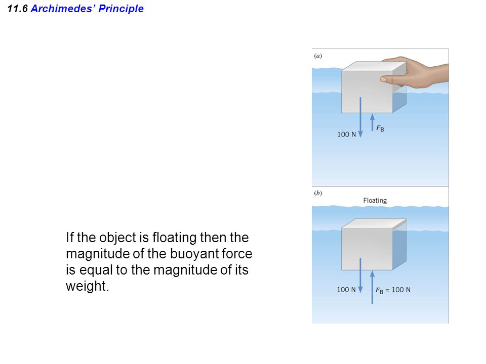 11.6 Archimedes' Principle If the object is floating then the magnitude of the buoyant force is equal to the magnitude of its weight.