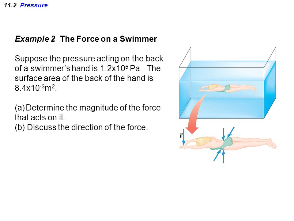 11.2 Pressure Example 2 The Force on a Swimmer Suppose the pressure acting on the back of a swimmer's hand is 1.2x10 5 Pa.