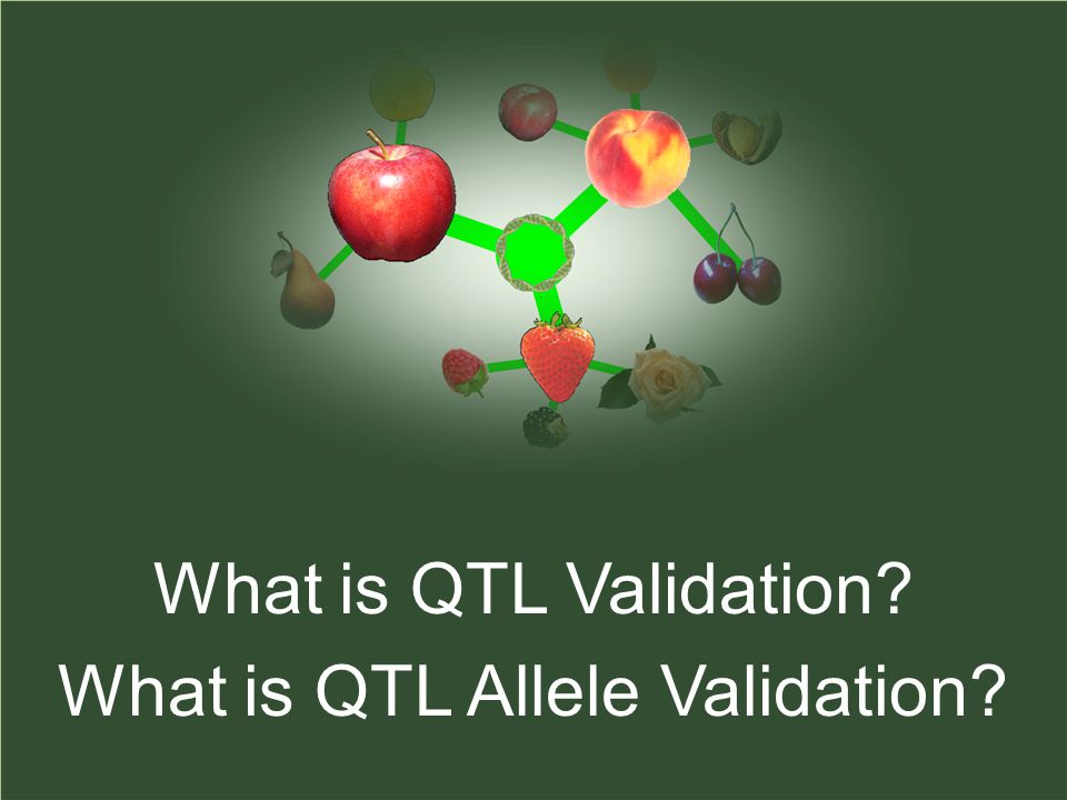 What is QTL Validation What is QTL Allele Validation