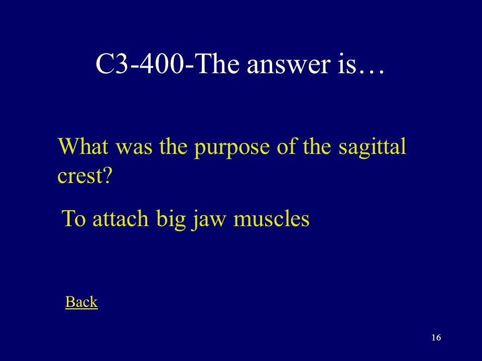 15 C3-300-The answer is… What does Prehensile mean The ability to grasp Back