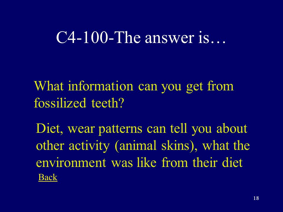 17 C3-500-The answer is… What information can you get from fossilized skull fragments.
