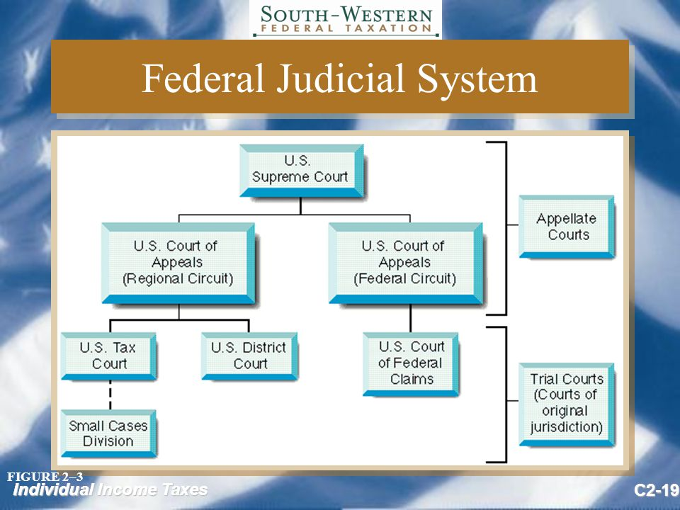 Individual Income Taxes C2-19 Federal Judicial System FIGURE 2–3