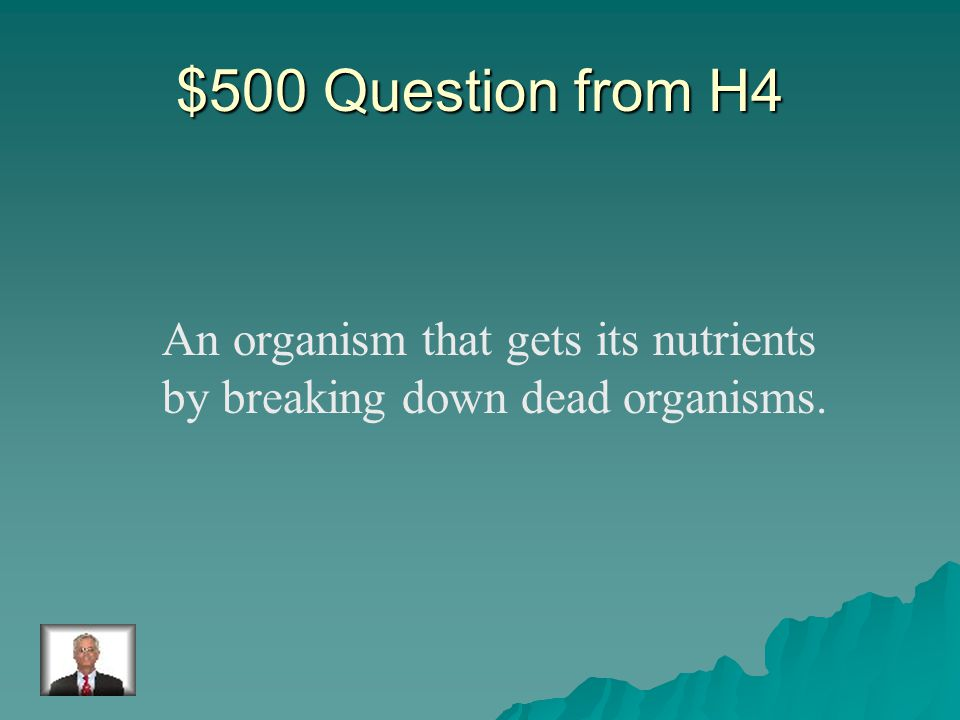 $400 Answer from H4 carnivores