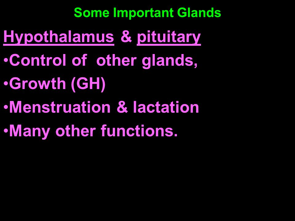 Some Important Glands Hypothalamus & pituitary Control of other glands, Growth (GH) Menstruation & lactation Many other functions.