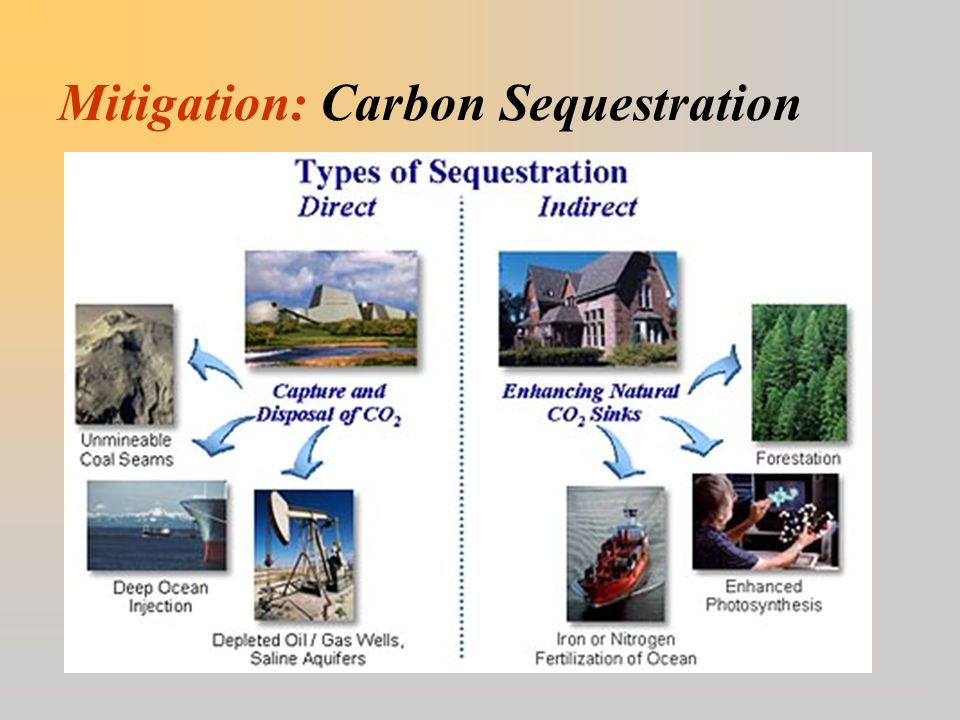 Mitigation: Carbon Sequestration