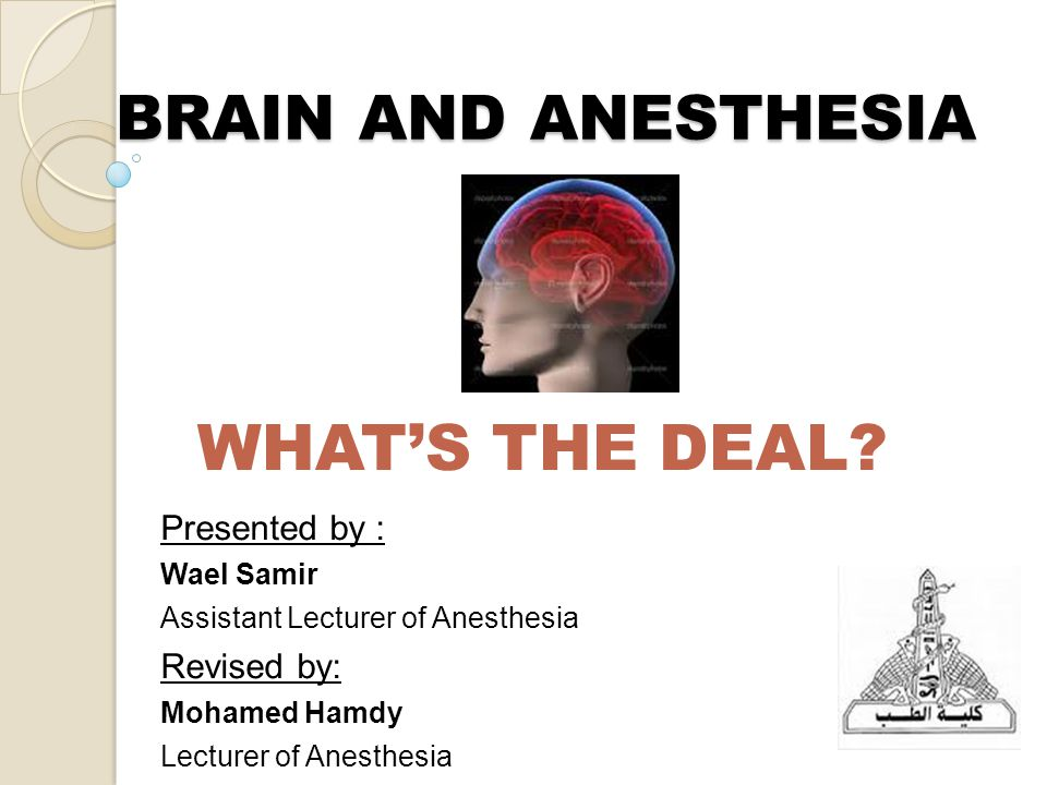 BRAIN AND ANESTHESIA WHAT'S THE DEAL.