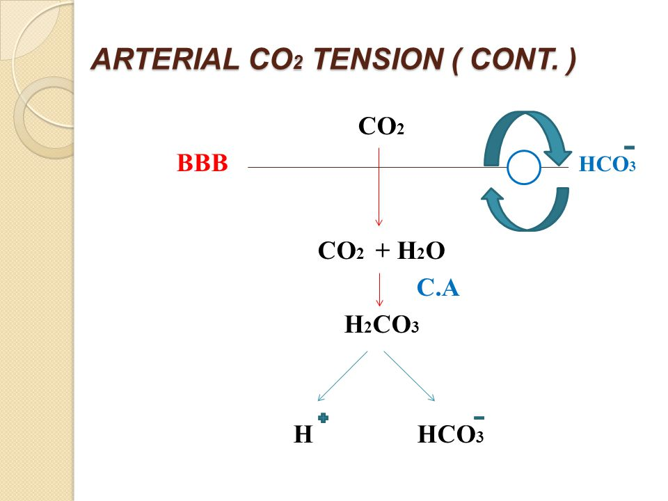 ARTERIAL CO 2 TENSION ( CONT. ) CO 2 BBB HCO 3 CO 2 + H 2 O C.A H 2 CO 3 H HCO 3