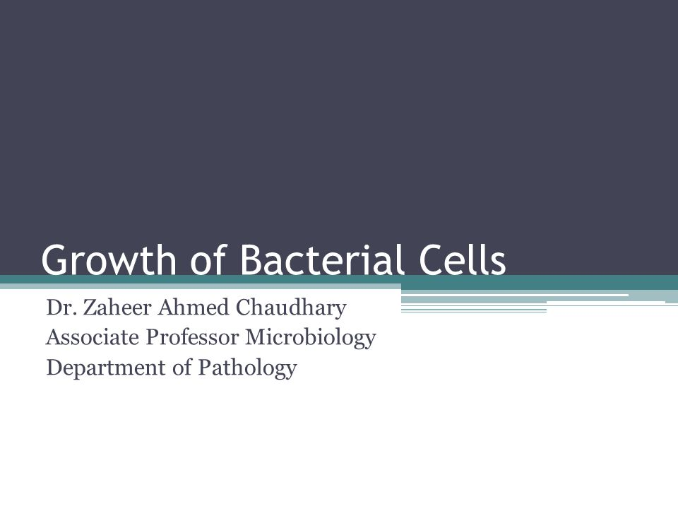 Growth of Bacterial Cells Dr.