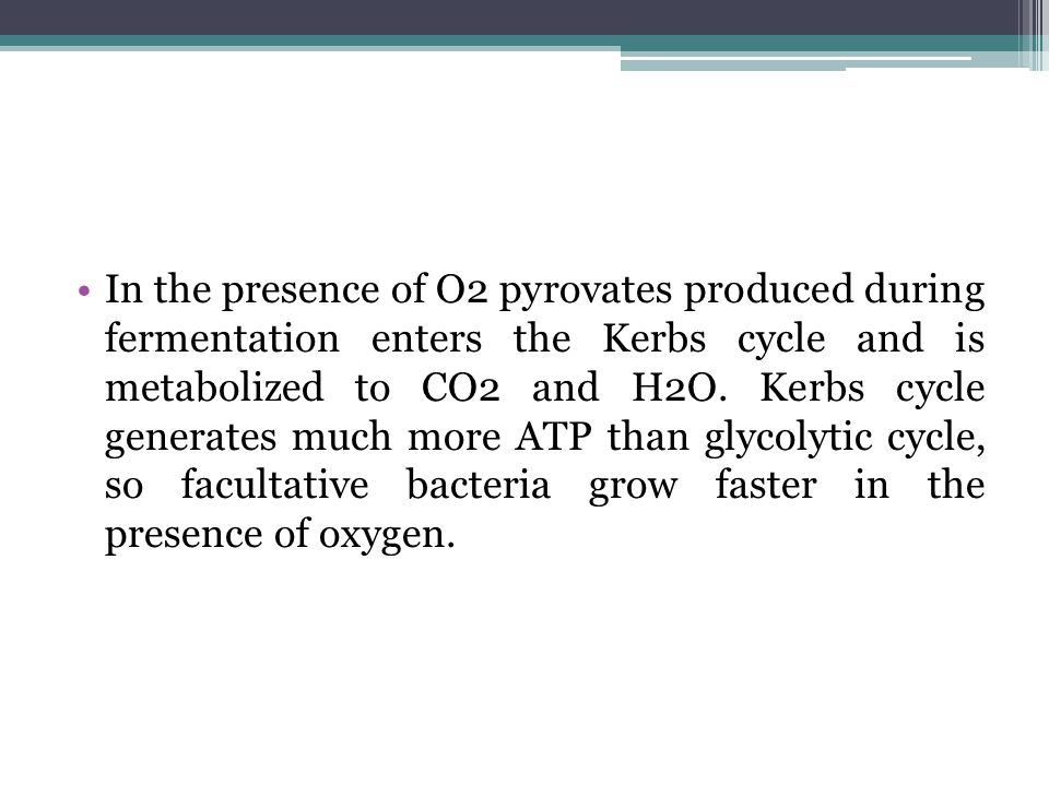 In the presence of O2 pyrovates produced during fermentation enters the Kerbs cycle and is metabolized to CO2 and H2O.