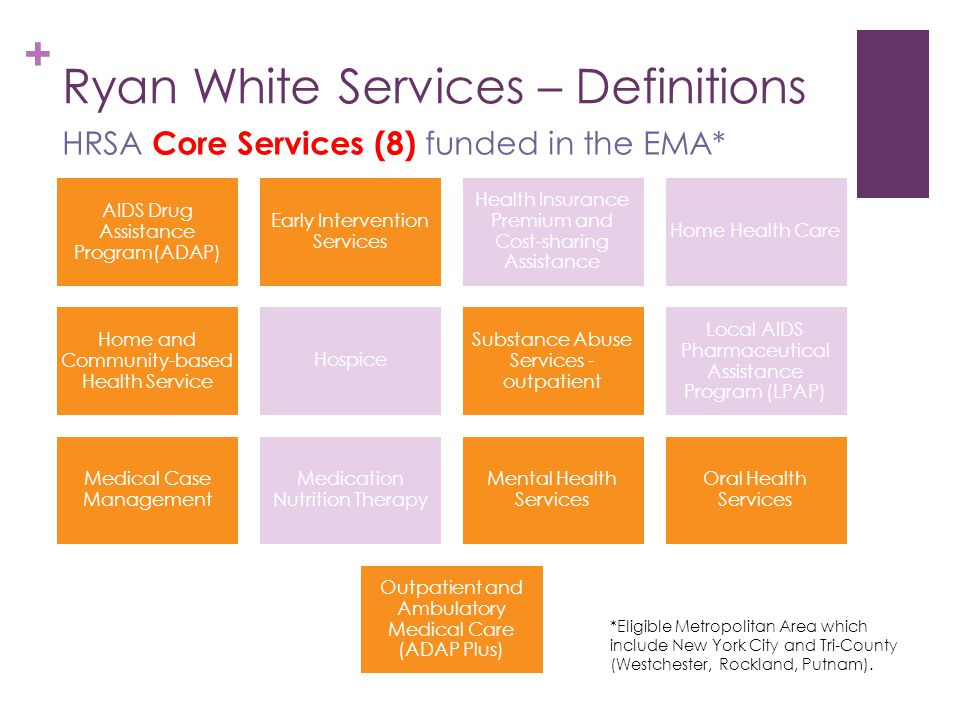 + Ryan White Services – Definitions HRSA Core Services (8) funded in the EMA* AIDS Drug Assistance Program(ADAP) Early Intervention Services Health Insurance Premium and Cost- sharing Assistance Home Health Care Home and Community-based Health Service Hospice Substance Abuse Services - outpatient Local AIDS Pharmaceutical Assistance Program (LPAP) Medical Case Management Medication Nutrition Therapy Mental Health Services Oral Health Services Outpatient and Ambulatory Medical Care (ADAP Plus) *Eligible Metropolitan Area which include New York City and Tri-County (Westchester, Rockland, Putnam).