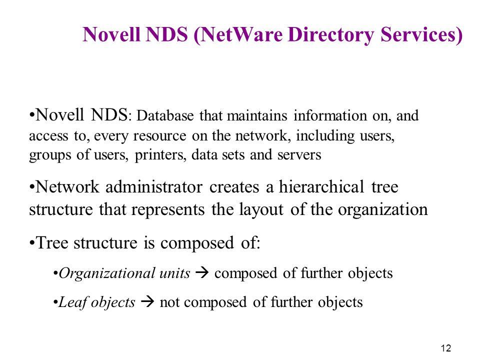 Network Administrator NetWare 41