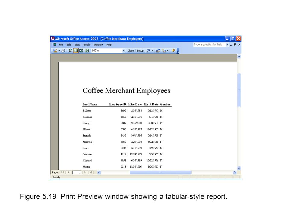 Figure 5.19 Print Preview window showing a tabular-style report.