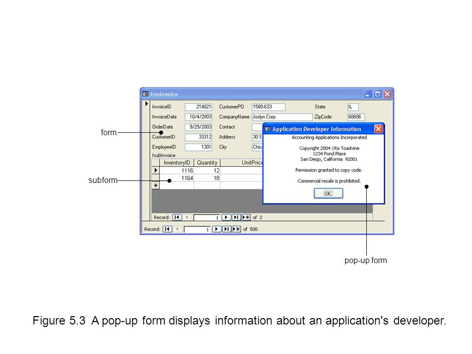 Figure 5.3 A pop-up form displays information about an application s developer.