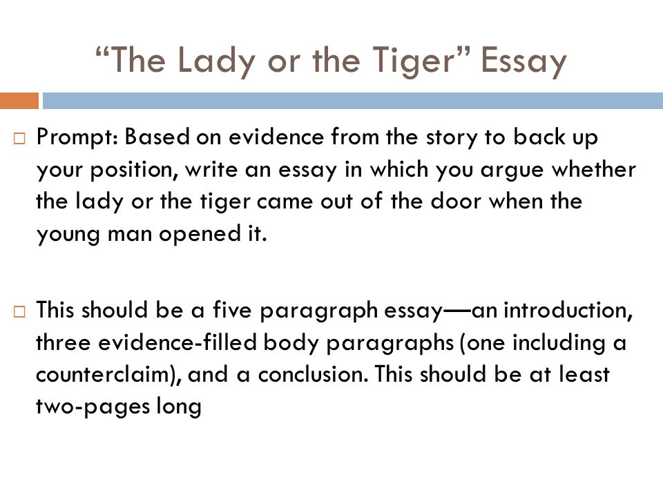 An Example Essay Image Example Essay Questions For Applicants Renweb
