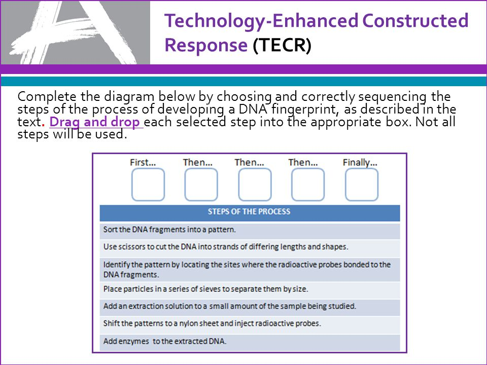 Technology-Enhanced Constructed Response (TECR) Complete the diagram below by choosing and correctly sequencing the steps of the process of developing a DNA fingerprint, as described in the text.