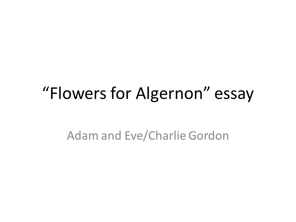 Essay on flowers