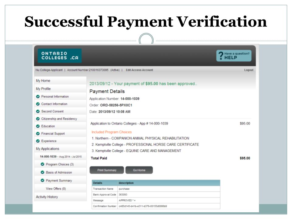 Successful Payment Verification