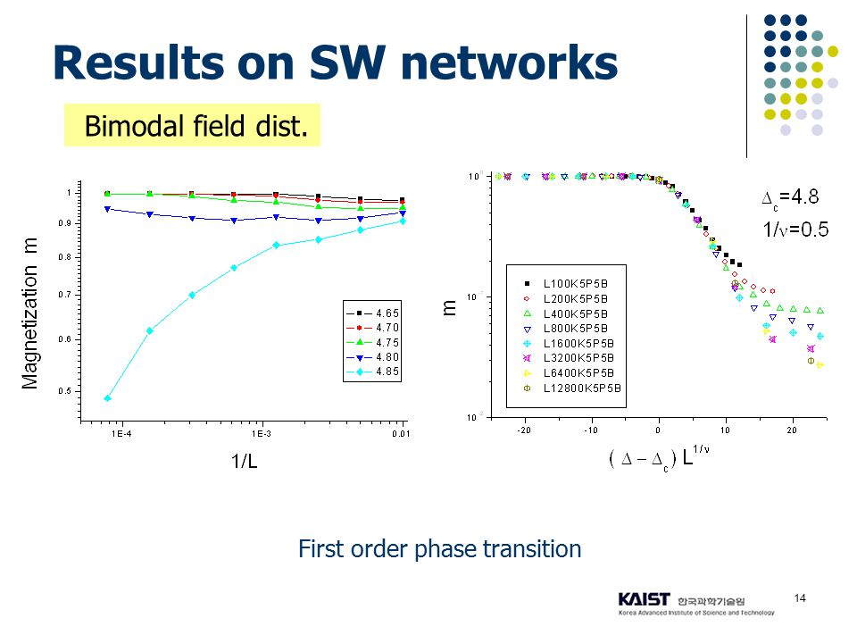14 Results on SW networks First order phase transition Bimodal field dist.